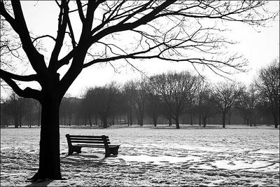 sola-en-el-parque